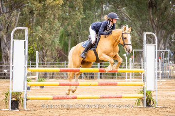 Euroa rider Sophie Landy and Pride of Gold placed second in the 104cm pony class