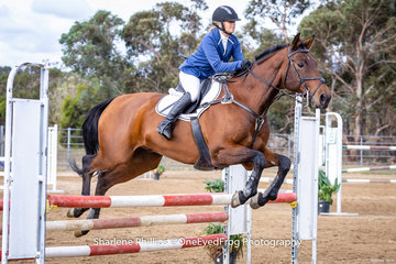 Wendy Kimpton and Strezlecki Dewalt placing 3rd in the open 95cm