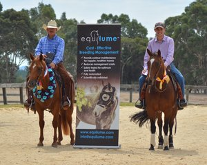 Equilume Open Champion Wayne Hinder and Reysn Hope and Reserve Champion Lil Flashy Rey also ridden by Wayne Hinder Photo Credit Michelle Hinder