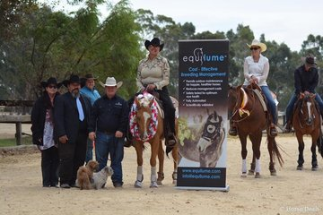 Little Rock Ranch Non Pro Champion Susan McCormick and His Diluted Gunner Photo Credit Michelle Hinder