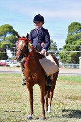 Stacey McMaster won the Champion Rider 12yrs and under 17yrs.
