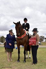 Judges Annie Williams and Jacqui Langfield awarded Supreme Champion Rider to Bridget Sell riding Cooramin Winterfell Hit.