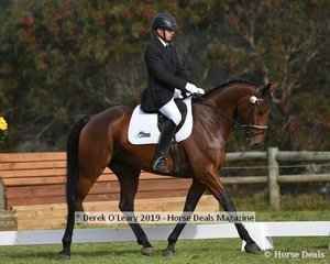 """David Middleton in the CCI2*L riding """"WEC In The Money"""""""
