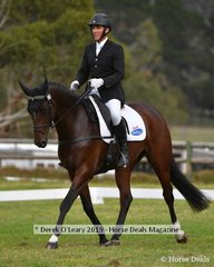 """Will Enzinger in the CCI2*S riding """"Cairo Xtreme"""""""