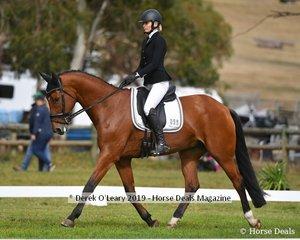 """Alex McDonough in the CCN1*L riding """"Joie Du Lys"""""""