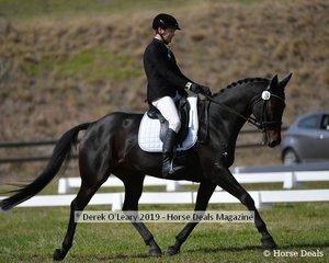 """David Prior riding """"Highfield Luda K1"""" in the CCI2*S"""