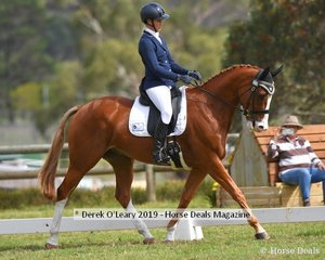 """Jaimie Stichel in the CCI2*L riding """"New World Rolls Royce"""""""