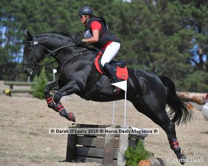 "Leading in the EVA80 Section B after Dressage and Cross Country, Janelle Miller riding ""Monte Carlo Grand"""