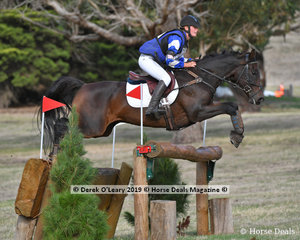 """Genevieve Nicholson placed 6th in the CCI3*S riding """"Buckwell Park Archer"""" with a final score of 127.20"""
