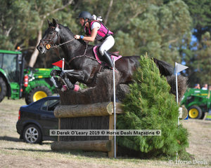 """Bessie Dimmery rode """"Ruban Son"""" in the CCI3*S, placing 5th"""