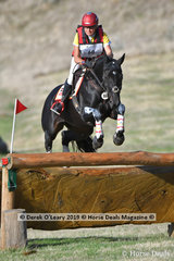 """Delwyn Ogilvy placed 4th in the CCI3*S riding Precious Dreams"""" with a final score of  77.70"""