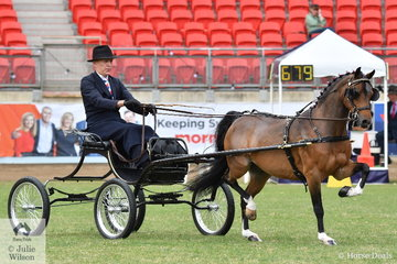 Chris Lawrie is famous for showing show horses, but he is rapidly gaining a reputation as a Hackney Pony trainer and driver. Chris drove his own and Anne Lindh's nomination, the beautiful, 'Hudson Wildcard' to win the class for Hackney Pony Show Vehicle Turnout.