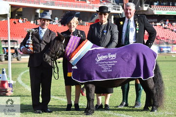 Laurie Grima's Broodmare winner, 'Glanmort Zara' (Braevilla Rascal/Lyton Gaitey) was declared Supreme Champion Led Shetland. Pictured L-R Laurie Grima, award presenter, Christine Barratt, Judge, Fiona Wilson and Councilor In Charge, Duncan McIntyre.