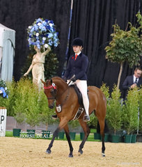 "Chelsea Morelli and ""Mandaley Silk Road"" were winners of The RAFFERTY RUGS Champion Newcomer Open Pony event."
