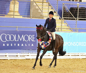 "The MCKENZIE FAMILY Grand Champion Open Newcomer ""Royalwood On Broadway"" ridden by Brett Peel."