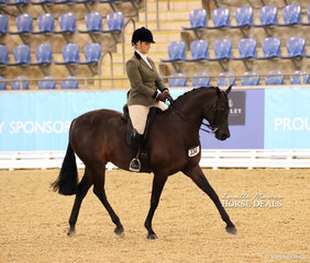 """Eloise Giustozzi riding """"Pemberton Applause"""" in The GLENDON BRAE HOMES Owner/Rider Large Show Hunter Galloway event."""