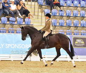 """Abby Heffer riding """"AKS Rumor Has It"""" in The STAFFORD FAMILY Owner/Rider Small Show Hunter Hack event."""