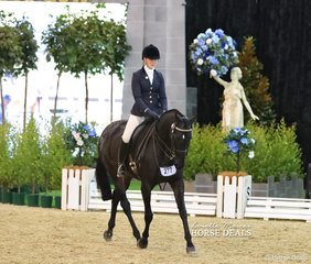 """Vienna Smith riding """"Hypnotic"""" in The STEPHEN McCLINTOCK VETERINARIAN Owner/Rider Small Open Hack event."""