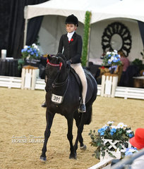 "Alexandra Berle riding ""Karma Park Royal Silk"" in The STEPHEN McCLINTOCK VETERINARIAN Owner/Rider Small open Hack event."