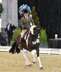"""Fiona McIntyre and """"Opinion"""" work out in The DIAMOND DELUXE HORSEWEAR Owner/Rider Large Show Hunter Hack event."""