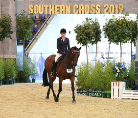 """Catherine Neill's """"SLM Mercedes"""" was The PREMIUM AIR CONDITIONING Reserve Champion Owner/Rider Large Open Hack."""