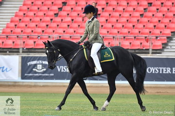 Brooke Terry and the Adelle Stud's nomination, 'Adelle Centerfold' (O'Briens Resette/Adelle Catwalk) took fifth place in the class for ASH Gelding.Colt/Filly Under Four Years.