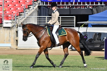Brielle Powell rode her, 'Runaroo Tomcat' (Willjohn Peeping Tom/Brown Star) to win the  class for Australian Stock Horse Mare/Gelding, Rider Under 18 Years.