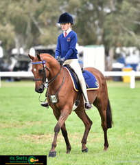 Primary Show Horse competitor, Olivia Comben rides Beckworth Commanding Striker to perfection at the 2019 Victorian Interschool State Championships.