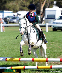 Clearing the first jump in her Primary 45cm Show Jumping was Grace Gartung and her horse Dalgangle Pirate Pete riding for Saint Patricks Primary School - Stratford.