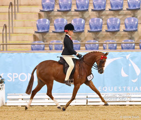 """The SKINNER HAULAGE Champion Child's Open Small Pony """"Newington Tinkerbell"""" ridden by Ella Manning."""