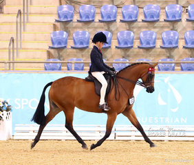 "Jackson Radley riding ""Lyndhurst China Doll"" in The POIDEVIN FAMILY Child's Open Large Pony event."