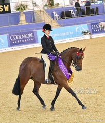 """The McCANN FAMILY Champion Child's Open Small Galloway """"Rosedale Piccadilly"""" ridden by Bianca Evans."""