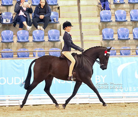 """The MOORE PARK STABLES Reserve Champion Child's Open Large Galloway """"Mistwood Lilly Of The Valley"""", ridden by Bianca VanKampen."""