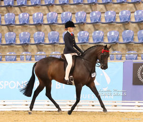 """The NATURES FARMACY Champion Child's Open Small Hack """"Royal Highness"""" ridden by Emily Murray."""