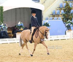 "The GLENDON BRAE HOMES Champion Child's Small Show Hunter Pony ""Kenda Park Strauss"", ridden by Elizabeth Taylor."