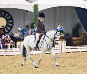 """Third placegetter in The GLENDON BRAE HOMES Child's Small Show Hunter Pony event """"Kingfisher Park Zac"""" ridden by Olivia Carter."""