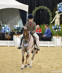 """Working out in The GORST RURAL Child's Medium Show Hunter Pony is """"Langtree Gigglepot"""" ridden by Amelia Waller."""