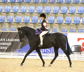 "Pictured on her victory lap after just being declared The PARRAMATTA MOTOR GROUP Champion Rider 9 & under 12 years is Tia Rose McKenzie. Tia is riding ""Mirinda Jackpot"" who was The MARDLING & MURRAY FAMILY Champion Child's Small Show Hunter Galloway. Later in the evening Jackpot was declared Grand Champion Child's Show Hunter."