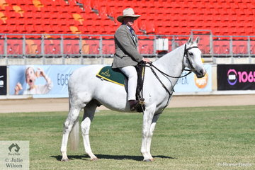 Sydney Royal Ringmaster, John Bennett OAM gets the rider's perspective of the main arena aboard his Australian Stock Horse, 'Tocal Cascade'.