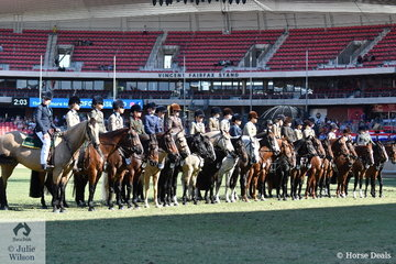 The impressive lineup for the Australian Stock Horse Youth Working class.