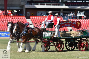 The Elemer Clydesdales and Vaughan's Hay Supplies' nomination, 'Jeanal Summer Solstice' and 'Deep Creek Ruhben' took out the class for Four Wheeled Vehicle Heavy Horse Turnout.