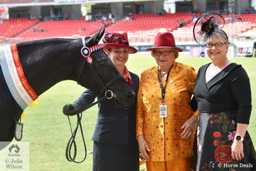 Michelle Wilton led the Adelle Stud and Brooke Terry's, three year old filly, 'Adelle Centrefold' (O'Briens Resette/Adelle Catwalk) to claim the Junior Championship and go on to claim the Supreme Led ANSA award. Pictured L-R, Michelle Wilton, award presenter, Leonie Livingston and judge, Bronwyn Noonan.