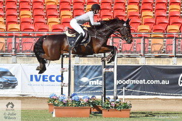 Paige McBain jumped a good second round clear aboard her, 'Greengrove Rebel' to finish just out of the money in the Young Rider Grand Prix today.