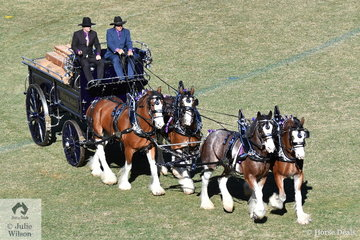 The Murroka Clydesdales and Demore Park's impressive nomination won the class for Four Wheeled Team of Three Or More Heavy Horses Turnout.