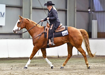 WENDY SHERRY RIDING J-BAR-C GO JUDGE GO IN THE RANCH RIDING