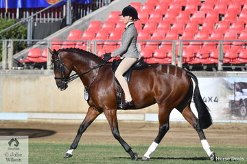 Jennifer Rutledge's typey and good going, 'SP Flagraiser' took third place in the class for Novice Show Hunter 15-15.2hh.