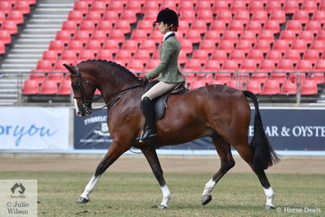 Kasey Currall rode Natalie Currall's, 'Westlake Marksman' to win the class for Novice Show Hunter 15-15.2hh.