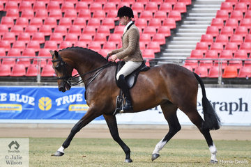 Greg Mickan rode the Romsey Park and Terry van Heythuysen nomination, 'ETP la Scala' by Tuschinski to win both the Novice and Open classes for Show Hunter 16-16.2hh