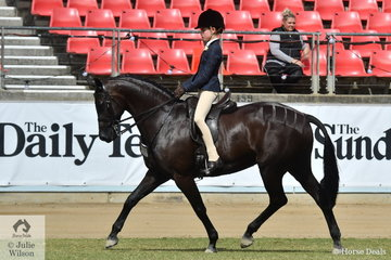 Elizabeth Taylor rode her, 'EBL One Night In Paris' to win the class for Open Show Hunter Galloway 14.2-15hh.