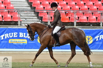 Riley Kent from Queensland rode his own and Nina Stone's nomination, 'National Velvet' to take second place in the class for Open Show Hunter Galloway 14.2-15hh.